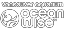 OWlogo